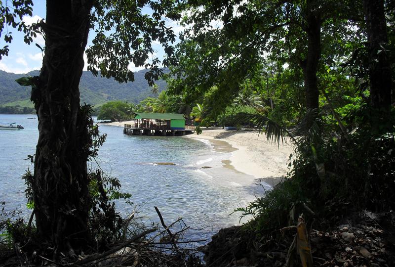 Beach and trees capurgana colombia