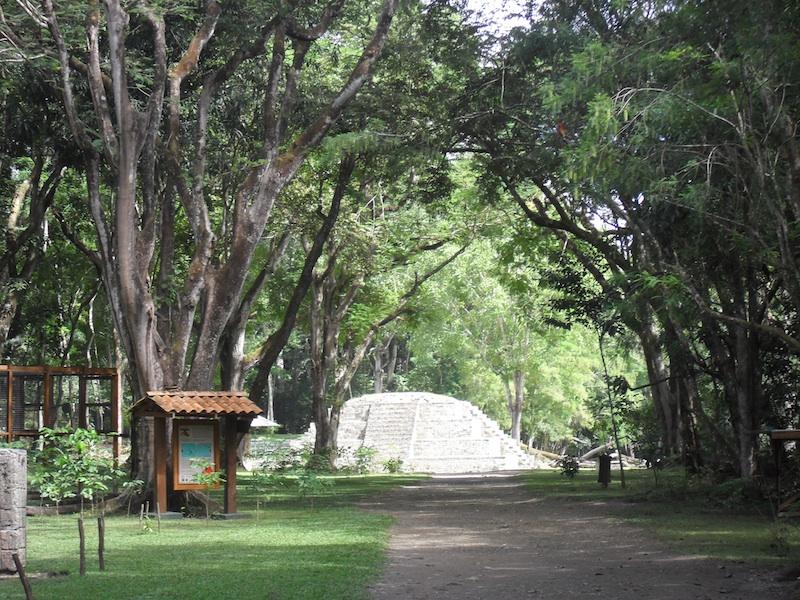 Copan ruins maya